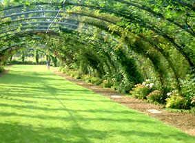 Oeuf en ternois for Jardins fleuris paysagiste